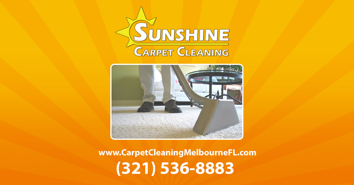 Video Pet Urine And Rugs Sunshine Carpet Cleaning