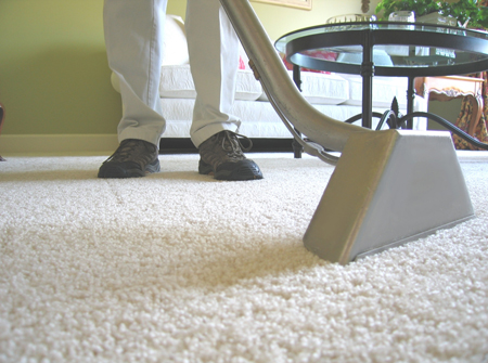 person professionally cleaning carpet